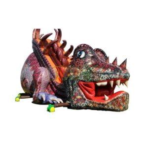 Giant Dragon Slide 2