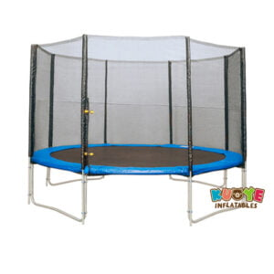 T009 10ft Trampoline with Safety Netting and Ladder 2